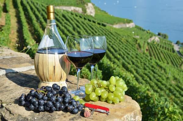 вино из Тосканы